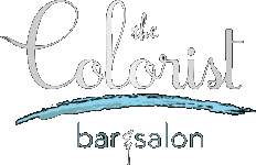 The Colorist Bar and Salon