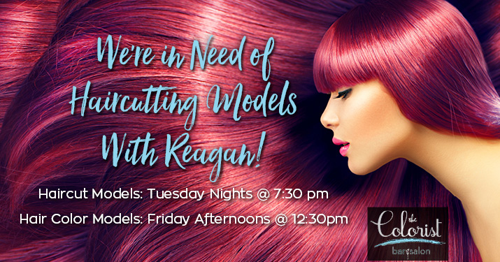 The Colorist Bar & Salon in Highland Heights is looking for haircut and color models!